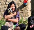 Pfotensitter: Hunde in Dresden
